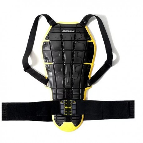 Rent back protector